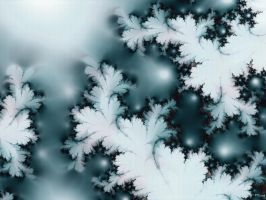 A Winter Fractal by Sya