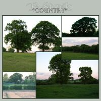 Country 1 by E-Stock