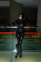 Purrrfect by Melima51