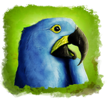 Hyacinth macaw by RiverRaven