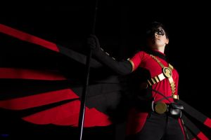 Red Robin by FrostedFlakeCosplay