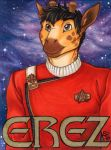 Erez badge by ScullyRaptor