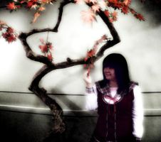 Wishing Upon a Tree by marieceleste