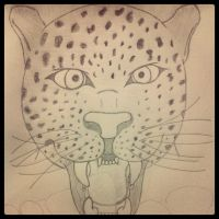 Sketch of a panther by MysteriouSxDreameR