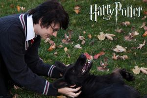 Harry Potter and Sirius Black by Kit-the-Pyro