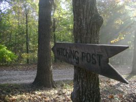 The Hitching Post by Auriii