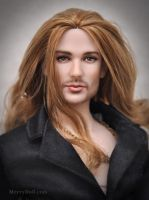 http://th02.deviantart.net/fs71/200H/f/2011/323/e/c/david_garrett_ooak_doll_by_mary_vassilieva-d4go2ju.jpg
