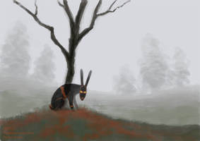 The Black Rabbit of Inle by RachelRaven