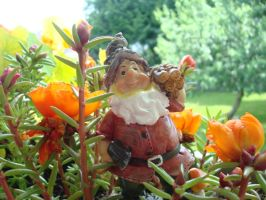 Mr. Gnome the gardner by 1andonlyEviLAnGeL