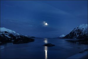 Witchcraft in the full moon by NikolaiMalykh