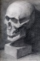 Sketch Skull by HOLYSHOLYS