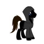 Shadow the Pony OC (Latest) by Shadwcoopa