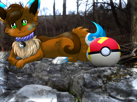 Ginger and a Pokeball by eevee4everX3