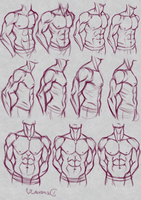 Male Muscular Torso Practice by DreamaDove93