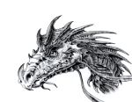 dragon head by dielectric-m