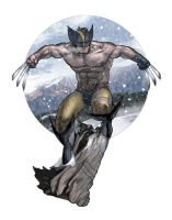 Wolverine by AlexPerkins
