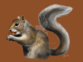S for Squirrel by BikerScout