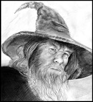 gandalf by last-trace
