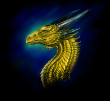 Gold Dragon by ShadowCorvus