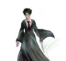 Harry Potter by DominicFrost