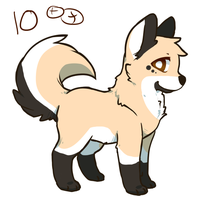 Muddy Brown Wolf SOLD by ADS-Adoptables