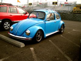 Blue Beetle by Zeds-Stock
