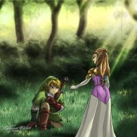 Legend of Zelda: The hero is back by nime080