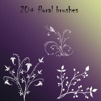20+ floral brushes by kr1cito