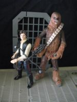 Chewbacca and Han Solo by wotan03