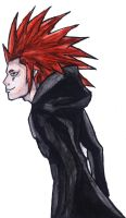 Axel by AxelFlame8