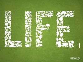 History of LIFE by WirdouDesigns