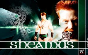 Sheamus: Wanna fight? by Photopops