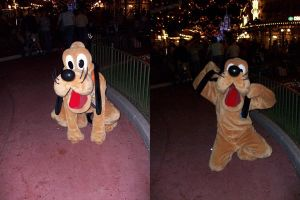 WDW Character: Pluto by wilterdrose-stock