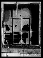 Forgotten Window by Mayanita