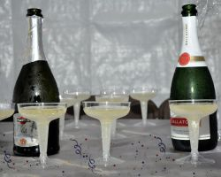 champagne toast by ritaflowers