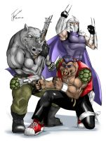 Shredder, Bebop and Rocksteady by Albert217