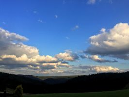 Thueringer Wald by Nicschi