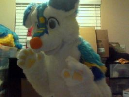 So I made a fursuit by Miiroku