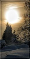 Cold sun by Yancis