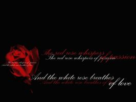 A red rose.... by depths-of-darkness