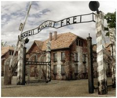 3d Auschwitz death camp by Damiano79