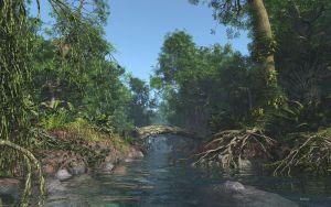 The Amazon Rainforest by Rendermojo