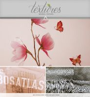 Textures - Pink Blossoms by So-ghislaine