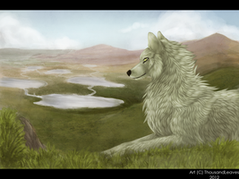 .:My land:. by ThousandLeaves