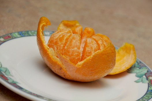 The Still Life of a Tangerine by ReloadUI