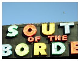 and south go the birds by superladysarah