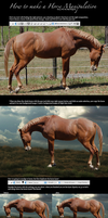 how to make a horse manip. by LostEscape