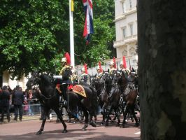 Household cavalry by photodash