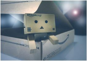 Danbo in tha house by frestro79