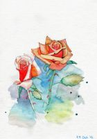 roses by Saliona93